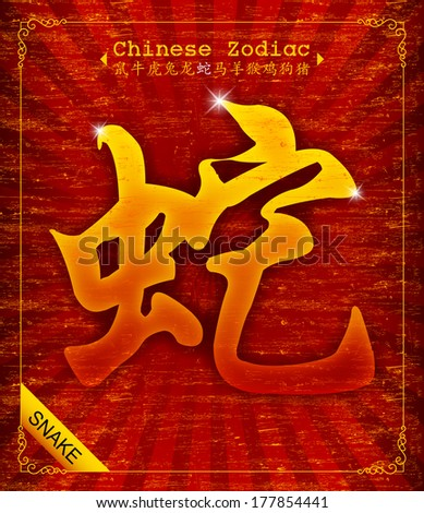 Chinese Zodiac - Year of the Snake  - stock vector