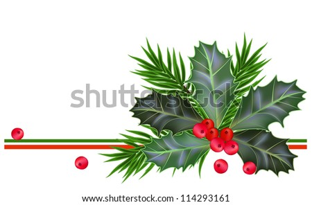 Christmas and New Year card with holly leaves and berries - stock vector