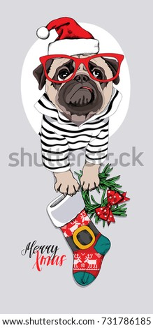 Christmas card. Pug Dog in a striped cardigan, in a red Santa's cap, glasses and with a funny sock, wreath. Vector illustration.