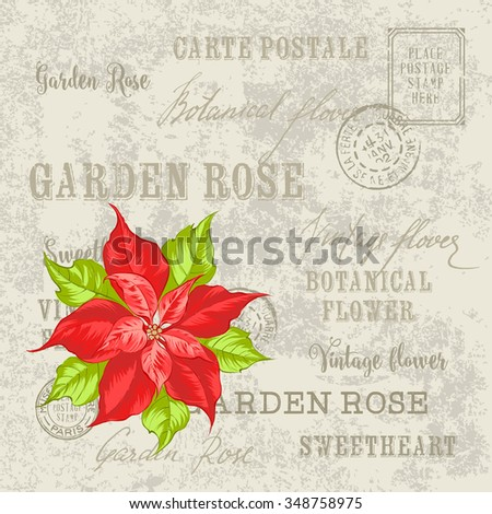 Christmas card with poinsettia christmas star. Vintage postcard background vector template for holiday invitation. Vector illustration. - stock vector
