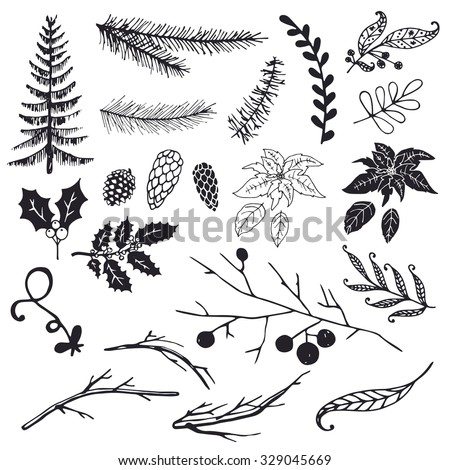Christmas design elements: fir, spruce branch, Christmas tree, branch, poinsettia, holly, pine cone.  - stock vector