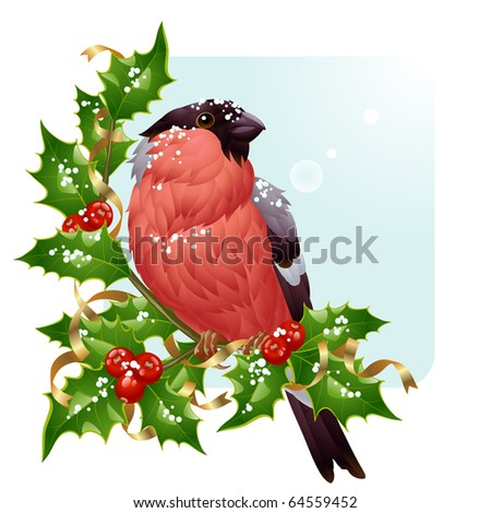 Christmas greeting card. Vector bullfinch and holly - stock vector