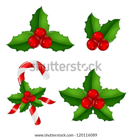 Christmas Holly Berry Set With Gradient Mesh, Vector Illustration - stock vector