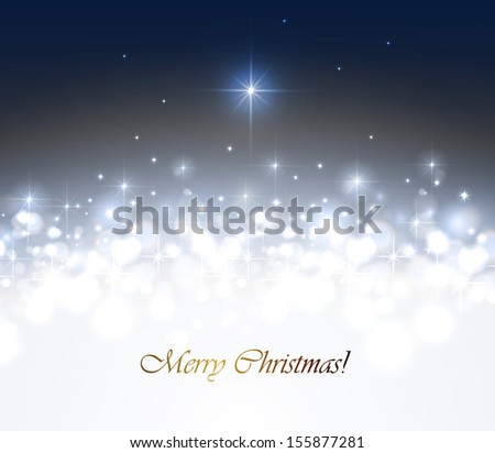 Christmas night with a bright star - stock vector