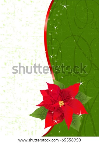christmas place card with red ribbon and poinsettia place for copytext - Christmas Poinsettia