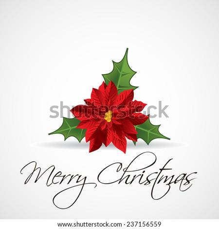 Christmas plant. vector illustration - stock vector
