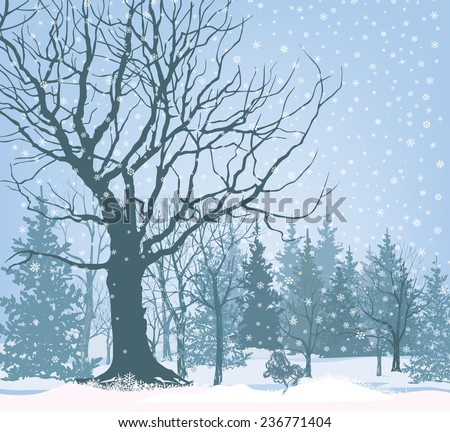 Christmas Snow Landscape Wallpaper Snowy Forest Background Tree Without Leaves Over Winter