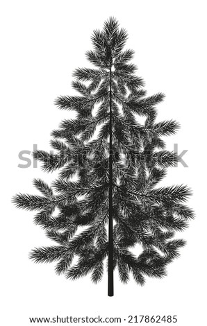 Christmas spruce fir tree black silhouette isolated on white background. Vector - stock vector
