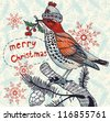 Christmas vector illustration of a colored winter bird - stock photo