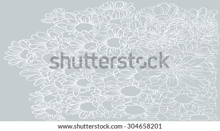 chrysanthemum flowers vector