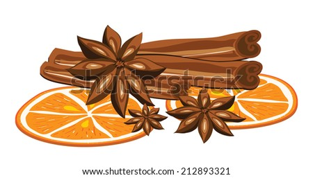 Cinnamon, anise and orange on a white background. Vector illustration - stock vector