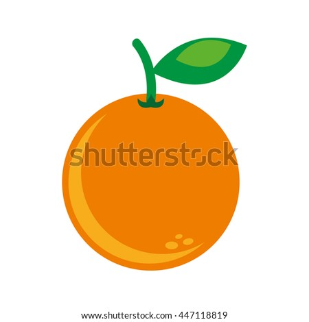 citrus fruit isolated icon design, vector illustration  graphic