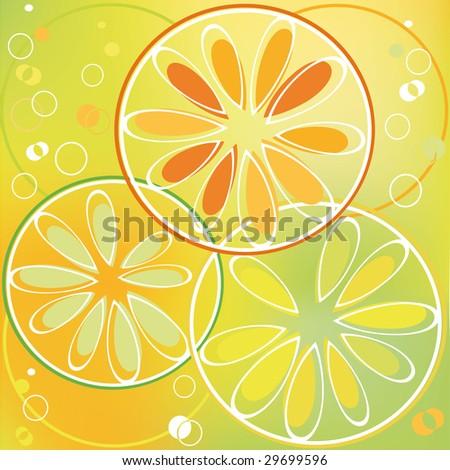 citrus slice  in bubbly drink - stock vector