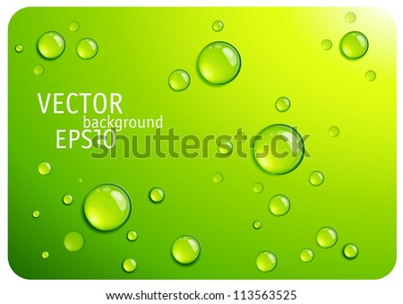 Clear green water drops. Vector background. - stock vector