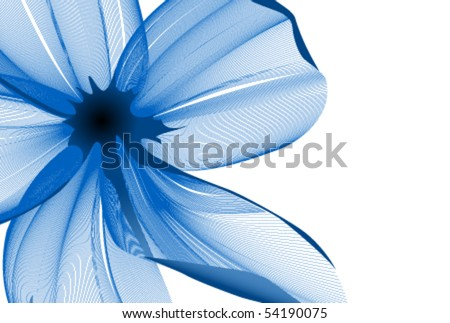 Close-up flower background - stock vector