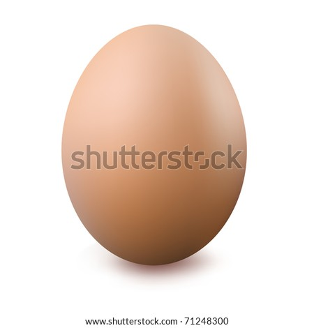 Close Up Of Egg, Isolated On White Background, Vector Illustration