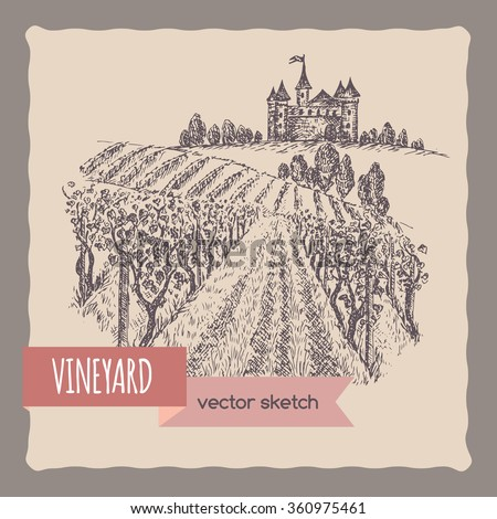 Close up vineyard, castle on a hill landscape hand drawn vector sketch. Great for wine and travel ads, brochures, labels. - stock vector
