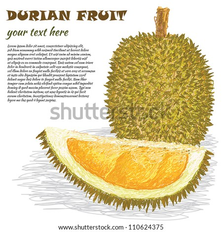 closeup illustration of ripe whole and half durian fruit.