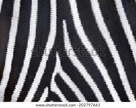 Closeup zebra skin abstract texture. Nature striped pattern for some black and white background. Texture of wild beauty. An example of natural drawing. Animal print. Vector illustration. - stock vector