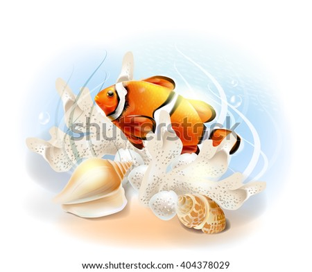 Clownfish in the sea. Illustration of the tropical underwater world. Aquarium fish. - stock vector