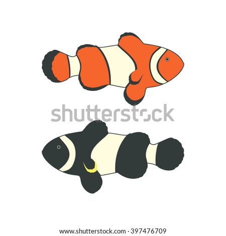 Clownfishes or anemonefishes. Vector illustration. Isolated on a white background. - stock vector