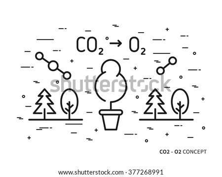 CO2 (carbon dioxide) to O2 (oxygen) linear vector illustration with trees, forest, plant, atom, molecule. Natural (ecology, ecological) oxygen creative graphic concept. Natural eco oxygen process.  - stock vector