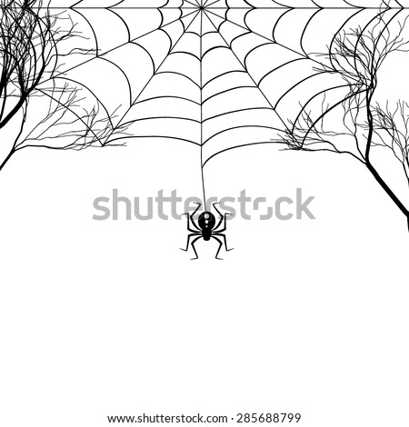 Cobweb between tree branches and a small spider on a white background. Black-and-white drawing. Vector illustration. - stock vector