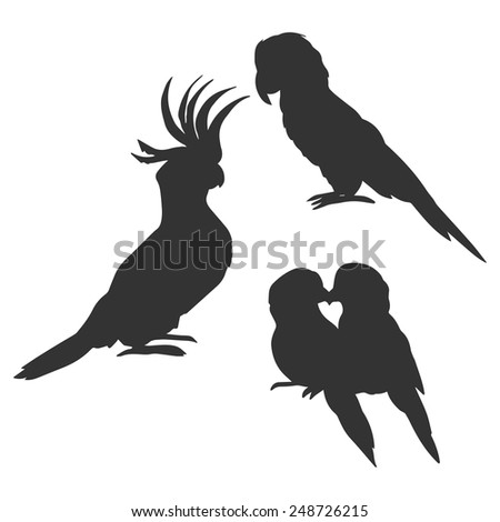 Cockatoo, macaw and lovebirds parrots silhouettes - stock vector