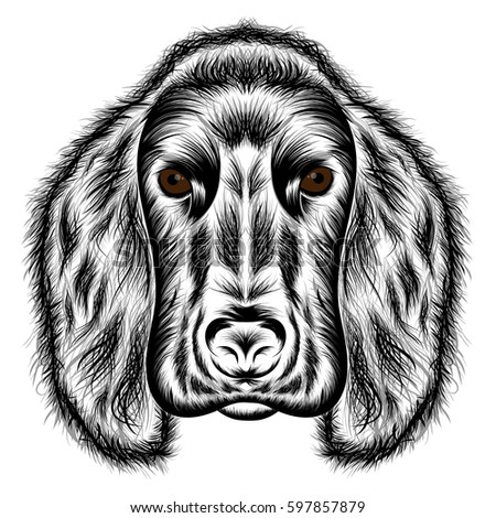 Cocker Spaniel. Vector silhouette of a dog's head