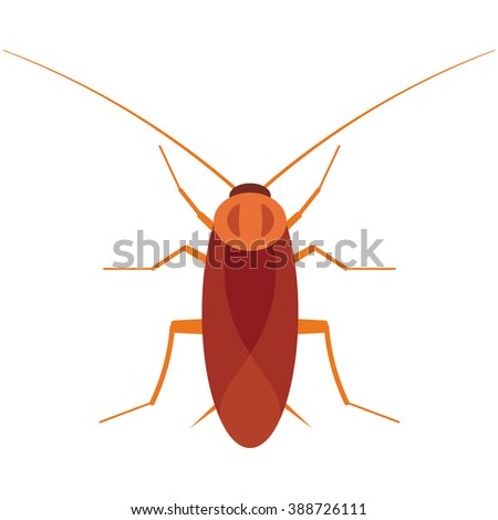 Cockroach bug vector illustration isolated on a white background. - stock vector