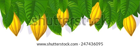 cocoa pod and leaf - the upper bar- vector illustration - stock vector