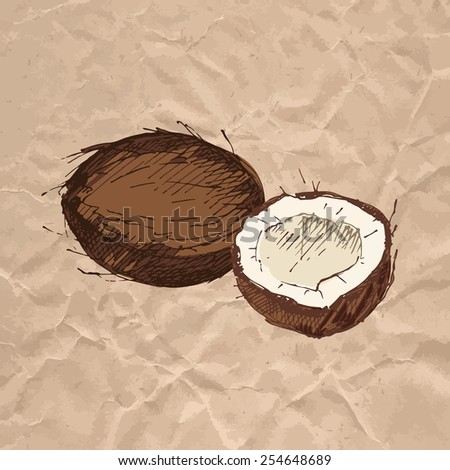 Coconut. Colorful sketch on crumpled kraft paper background. Vector illustration. - stock vector