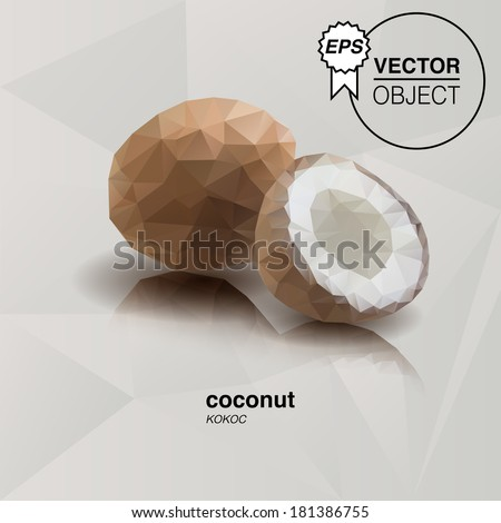 Coconut. Origami geometric style. Fruits  - stock vector