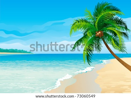 Coconut palm tree. Vector illustration  of coconut palm tree on tropical beach - Horizontal format. - stock vector