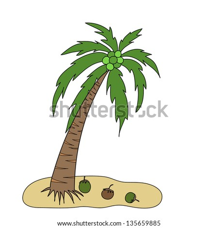 coconut tree is on a small island