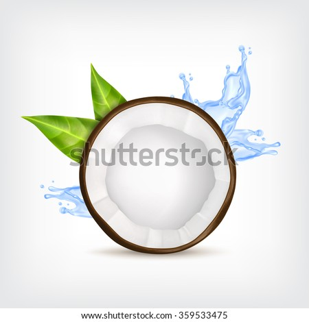 Coconut with green leaves and blue water splash. Vector icon. EPS10 vector