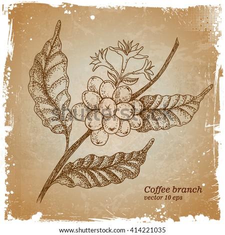Coffee branch retro background - stock vector