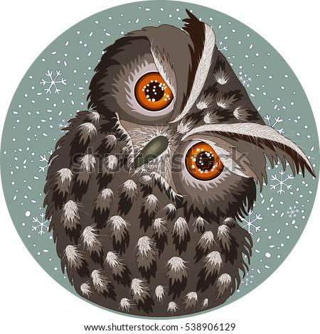 Owl Drawing Stock Imag...