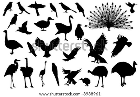 Collected, stylized vector silhouettes of 27 birds (more detailed versions available)