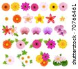 Collection Beautiful Flowers, Isolated On White Background, Vector Illustration - stock vector