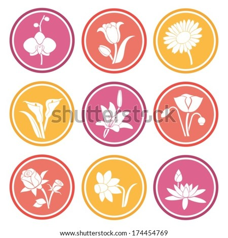 Collection flowers.Vector. EPS-10 - stock vector