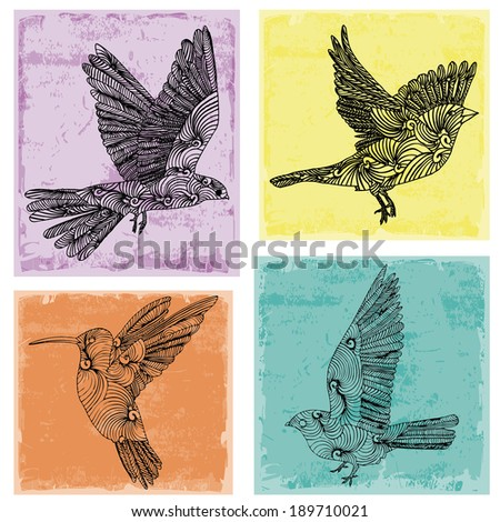 Collection of birds  - stock vector