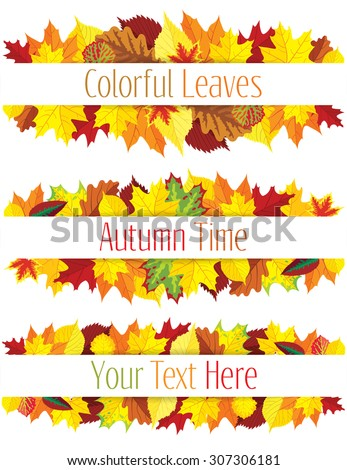 Collection of colorful autumn leaves border, vector illustration - stock vector
