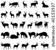 Collection of deer and goats silhouettes. Vector illustration. - stock photo