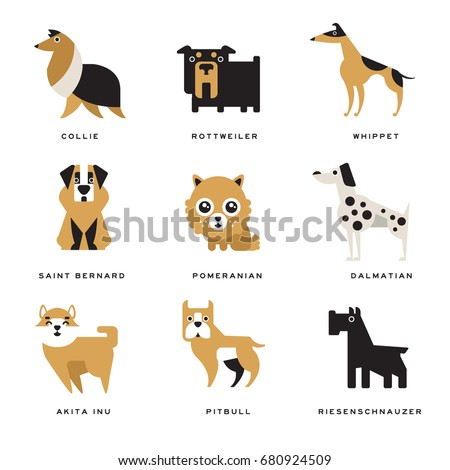Collection of different dogs breeds characters and lettering breed in English vector Illustrations