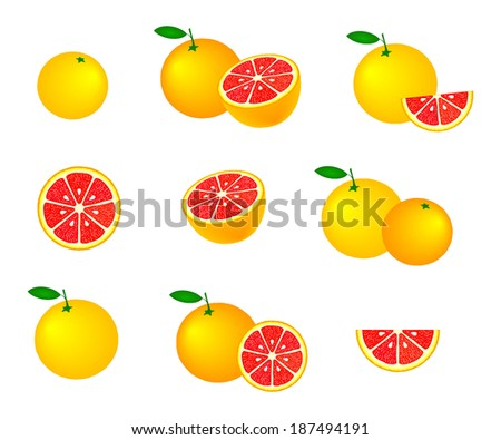 Collection of grapefruits, isolated on white background, vector illustration. - stock vector