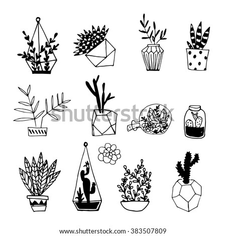 Black White Hand Drawn Cactus Succulents Stock Vector ...