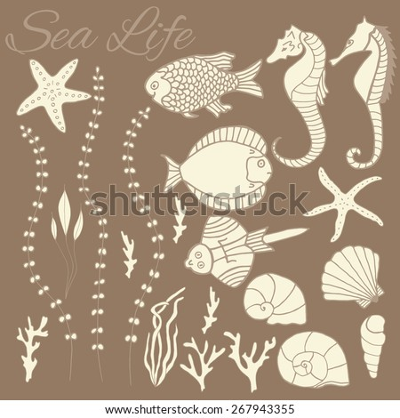 Collection of hand drawn fishes, corrals, shells, seaweeds and sea-horses. Design elements for topics of tropical sea life and seafood.