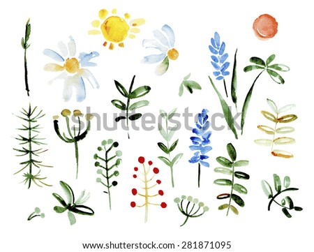 Collection of hand drawn flowers. Elements for your design. Pastel background. Vector illustration. Vector watercolor - stock vector