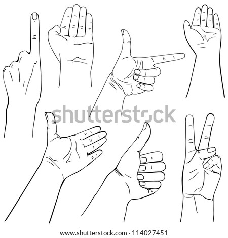 Collection of hands on different positions, outline illustration - stock vector